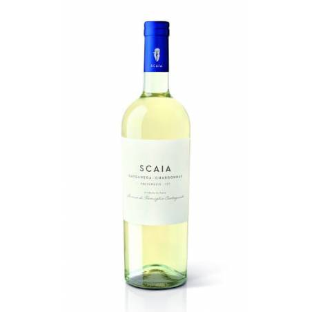 Tenuta S. Antonio Scaia Garganega Chardonnay IGT 2020 wino białe wytrawne NOWOŚĆ